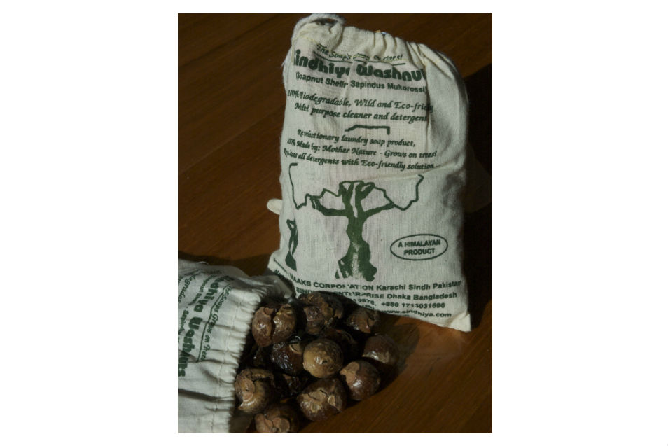 SoapNuts harvest from Natural Habitat