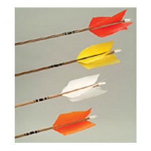 Wood Field Cedar Wood Arrows